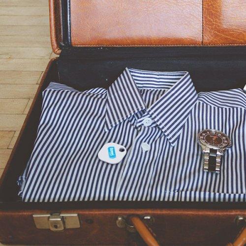 beagle_suitcase-1