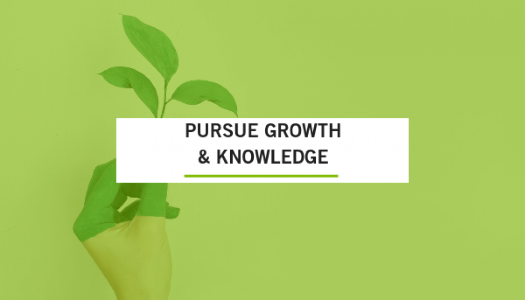 Pursue growth and knowledge overlay on green plant image, trade show solutions, Skyline Entourage