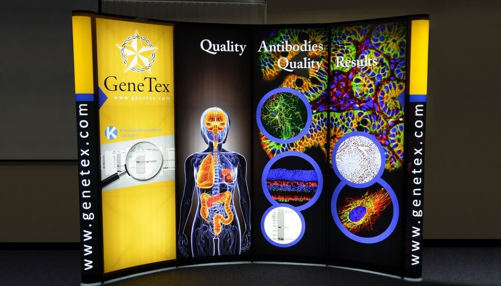Skyline Exhibits Genetex, 10x10, Portable Stand, Mirage