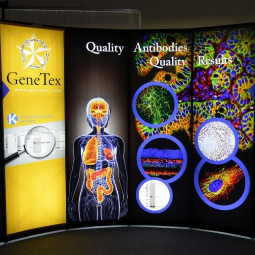 Skyline Exhibits Genetex, 10x10, Portable Stand, Mirage