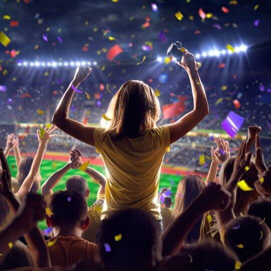 person standing up cheering at sporting event, trade show solutions, Skyline Entourage